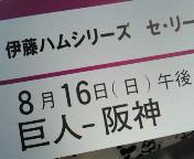 NEC_0299.jpg
